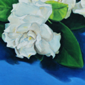 Gardenias for Mom